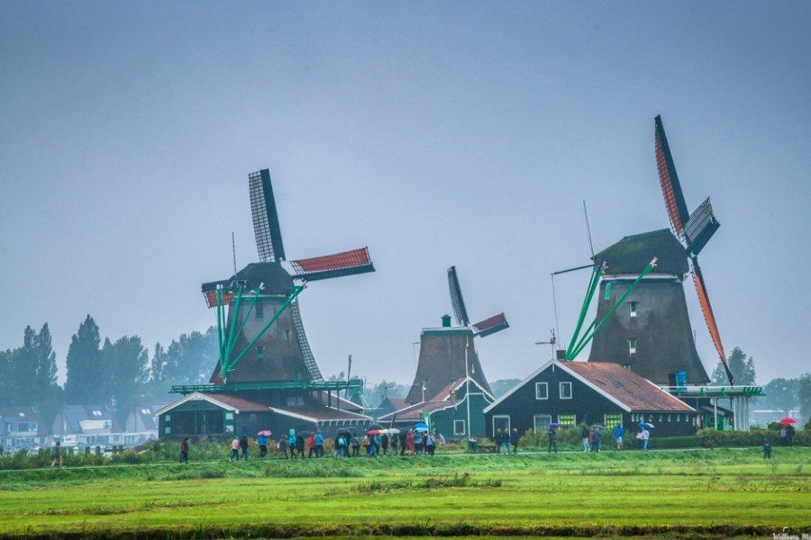 Moinhos de ventos