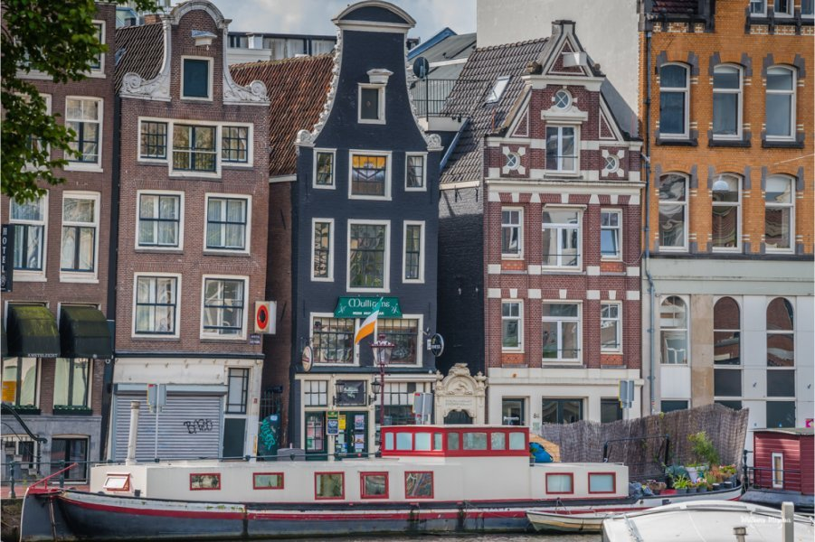 Holanda ou Países Baixos?